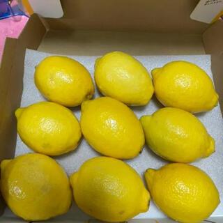 国産レモン ハウスレモン