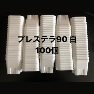 プレステラ90 白 100個セット
