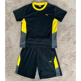 プーマ(PUMA)のPUMA  半袖短パン 上下セット 140cm(Tシャツ/カットソー)