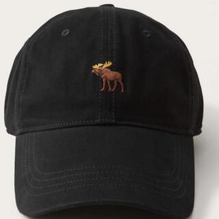 Abercrombie&Fitch - アバクロ キャップ 帽子 【国内直営店舗購入品.NEWアイコンモデル】