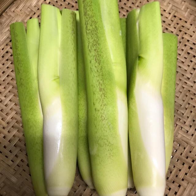 無農薬 マコモダケ マコモタケ 食品/飲料/酒の食品(野菜)の商品写真