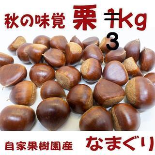 栗(生栗)3kg  送料無料  秋の味覚を直送(値下げ)(野菜)