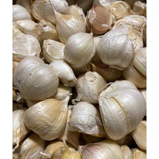 青森県産 福地ホワイト6片ニンニク2kg にんにく バラ(野菜)