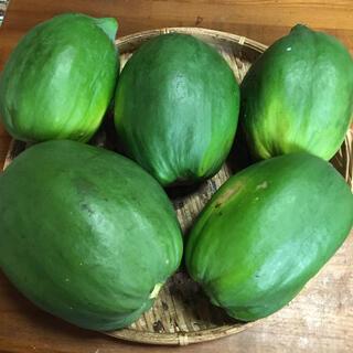 石垣島産   青パパイヤ(野菜)