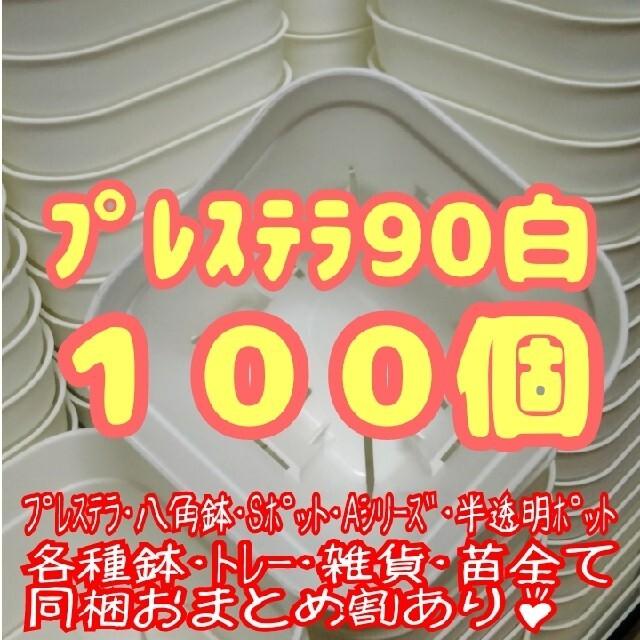【スリット鉢】プレステラ90白100個 多肉植物 プラ鉢 ハンドメイドのフラワー/ガーデン(プランター)の商品写真
