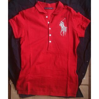 ラルフローレン(Ralph Lauren)のM  ralph  ポロシャツ 赤  ラルフローレン(ポロシャツ)