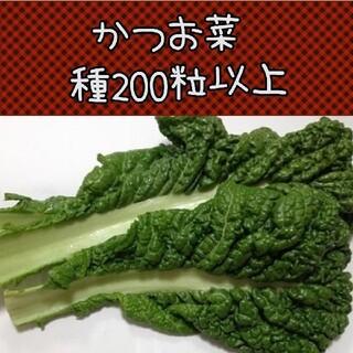 かつお菜種200粒以上(野菜)