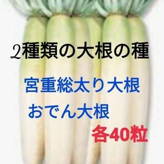 2種類の大根の種★黒田五寸人参の種20粒おまけです。(野菜)