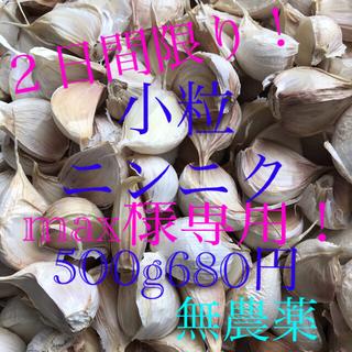 農家直送★小粒★奈良県産にんにくバラ売り(野菜)
