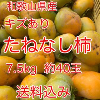 和歌山県産 たねなし柿 キズあり 家庭用 送料込み
