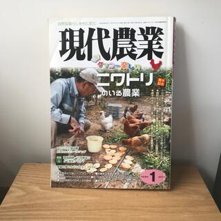現代農業 2017年1月号(専門誌)
