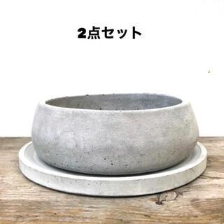 オシャレ セメント鉢2点セット 受け皿付き(プランター)