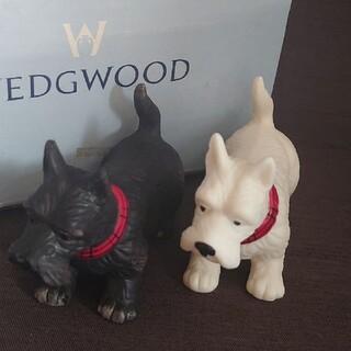 WEDGWOOD - ウェッジウッド 調味料入れセット ソルト&ペッパー  廃盤 未使用