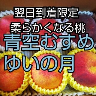柔らかくなる桃家庭用桃セット6個