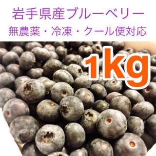 岩手県産ブルーベリー冷凍2kg【無農薬】(フルーツ)