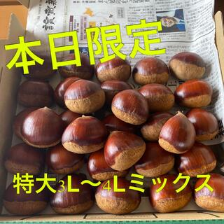 本日1名限定☆茨城県笠間産無農薬生栗 1kg+α(フルーツ)