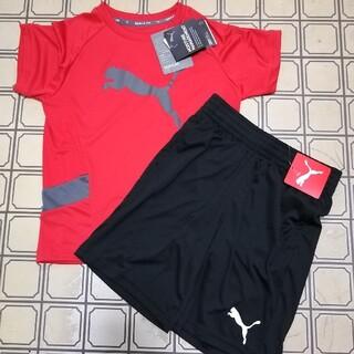 プーマ(PUMA)のプーマ ジュニア 半袖 Tシャツ ハーフパンツ 上下セット(Tシャツ/カットソー)