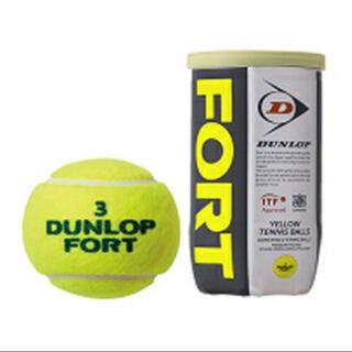 ダンロップ(DUNLOP)の10缶セット 新品 ダンロップ フォート 2個入(ボール)