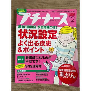プチナース 2011  12月号(専門誌)