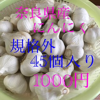 農家直送 奈良県産小玉にんにく45個入り(野菜)
