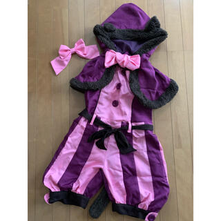 チシャ猫 コスチューム(衣装一式)