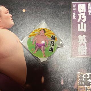 お相撲マグネット朝乃山