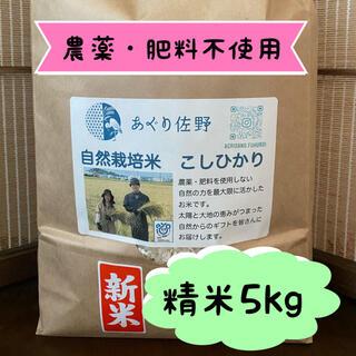 令和3年新米 自然栽培米 精米5kg 農薬肥料不使用 コシヒカリ
