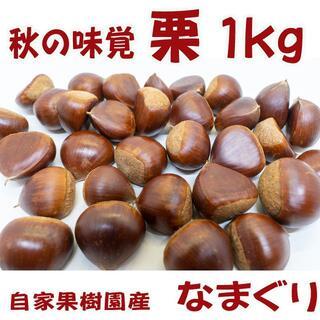 栗(生栗)1kg  送料無料  秋の味覚を直送(値下げ)
