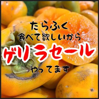 和歌山県産 種無し柿 箱込み4kg