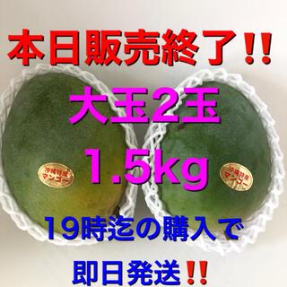 ☆希少☆ 沖縄県産 キーツマンゴー 大玉 2個