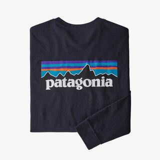 patagonia - ⭐️最安値⭐️新品!patagonia P-6ロゴレスポンシビリティー⭐️完売色