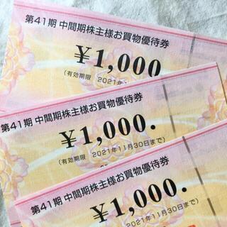 ビックカメラ 株主優待券 3000円分(ショッピング)