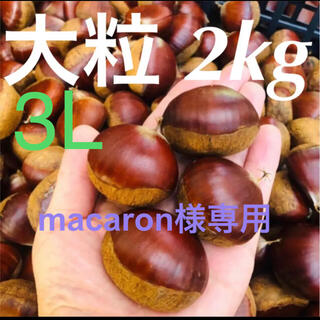 【macaron様専用】栗 2kg 3L  サイズ(野菜)