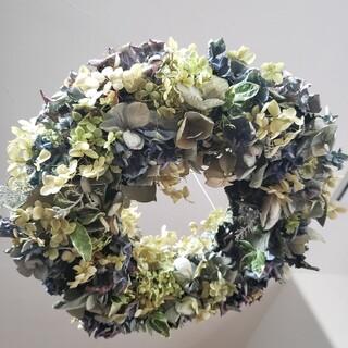 ドライフラワー 紫陽花のフライングリース