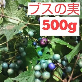 ブスの実 ウマブドウ(野菜)