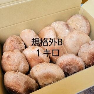 ☆椎茸農家☆【規格外B】1キロ(野菜)
