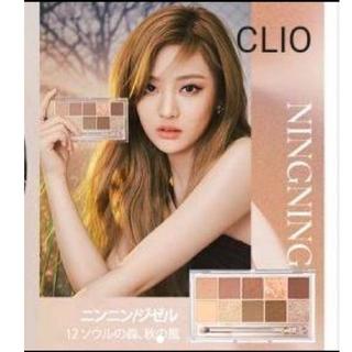CLIO クリオ プロアイパレット 12号 ソウルの森、秋の風