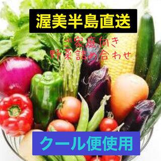 【渥美半島直送】野菜詰め合わせ 1人暮しに最適60サイズ