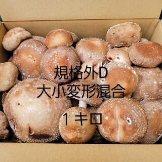 ☆椎茸農家☆【規格外D】1キロ(野菜)