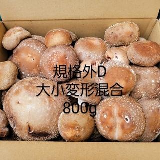 ☆椎茸農家☆【規格外D】900g(野菜)