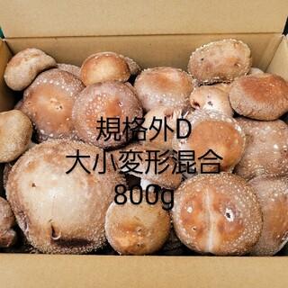 ☆椎茸農家☆【規格外D】800g(野菜)
