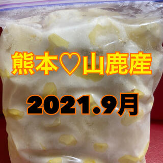 熊本県産 山鹿 栗 むき栗(野菜)