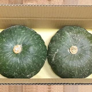 自然栽培かぼちゃ2玉(約3.6kg)無肥料無農薬の究極の自然農法☆北海道秋場さん(野菜)