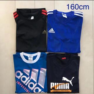 adidas - adidas & PUMA  Tシャツ 160cm  4枚セット