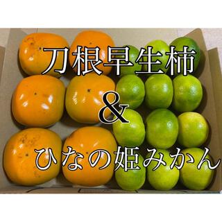 旬のお試し用‼️刀根早生柿 4個〜6個 & 極早生みかん 10個〜12個入り