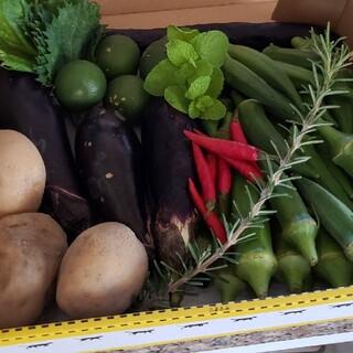 無農薬野菜セット香川県産、1セットのみ