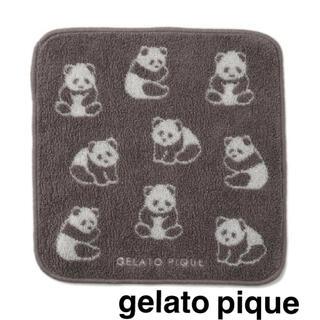 gelato pique - 新品【 ジェラートピケ 】今治タオル WEB限定色 パンダ ハンドタオル 日本製