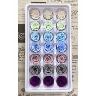 プリザーブドフラワー 2-3cm  21輪 バラ  ブルーパープルミックス 7色(プリザーブドフラワー)