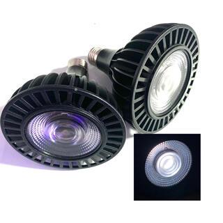 植物水草育成ライト LED PAR38 2個(その他)