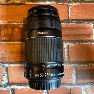 Canon - Canon Lens EFS 55-250mm